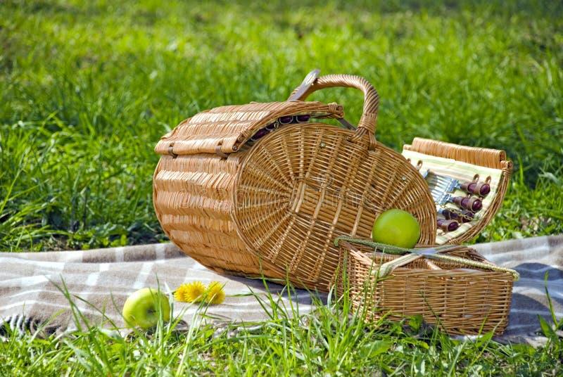 Mand voor de picknick stock foto