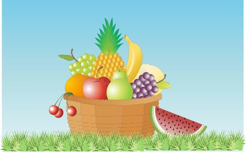 Mand vruchten stock illustratie