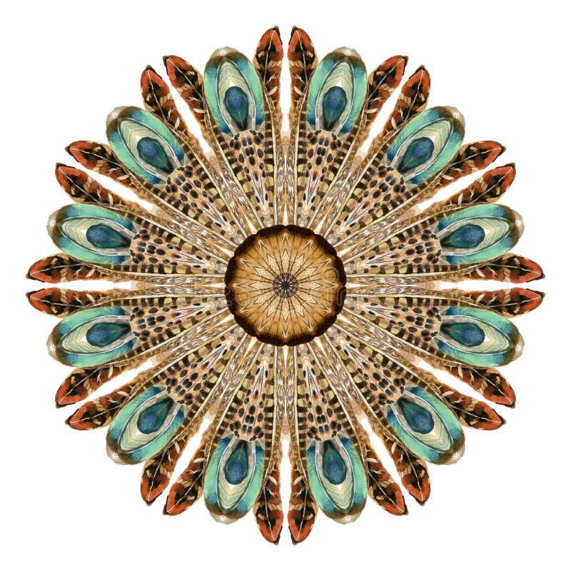 Mandala astratta dell'acquerello Modello circolare delle piume su fondo bianco fotografie stock libere da diritti