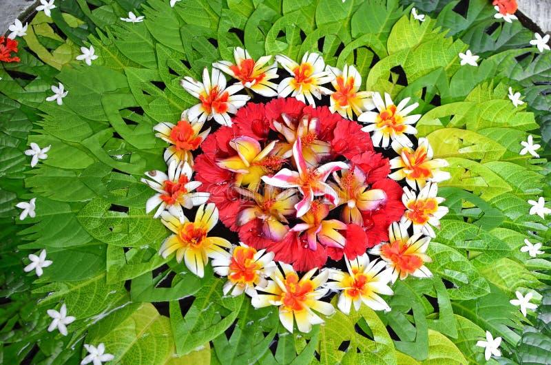 Mandala Błogosławi Bali Indonezja zdjęcie stock