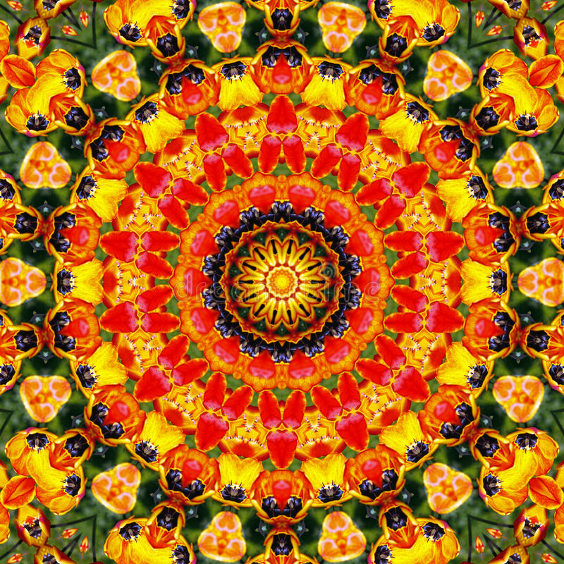 Mandala background. A colorful mandala pattern background design royalty free stock image