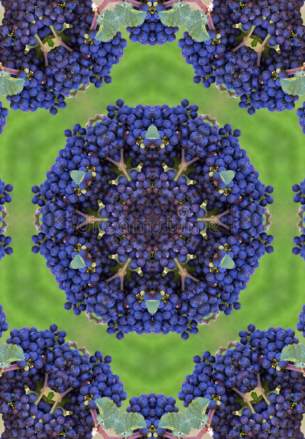 Mandala bleu de winegrapes illustration stock