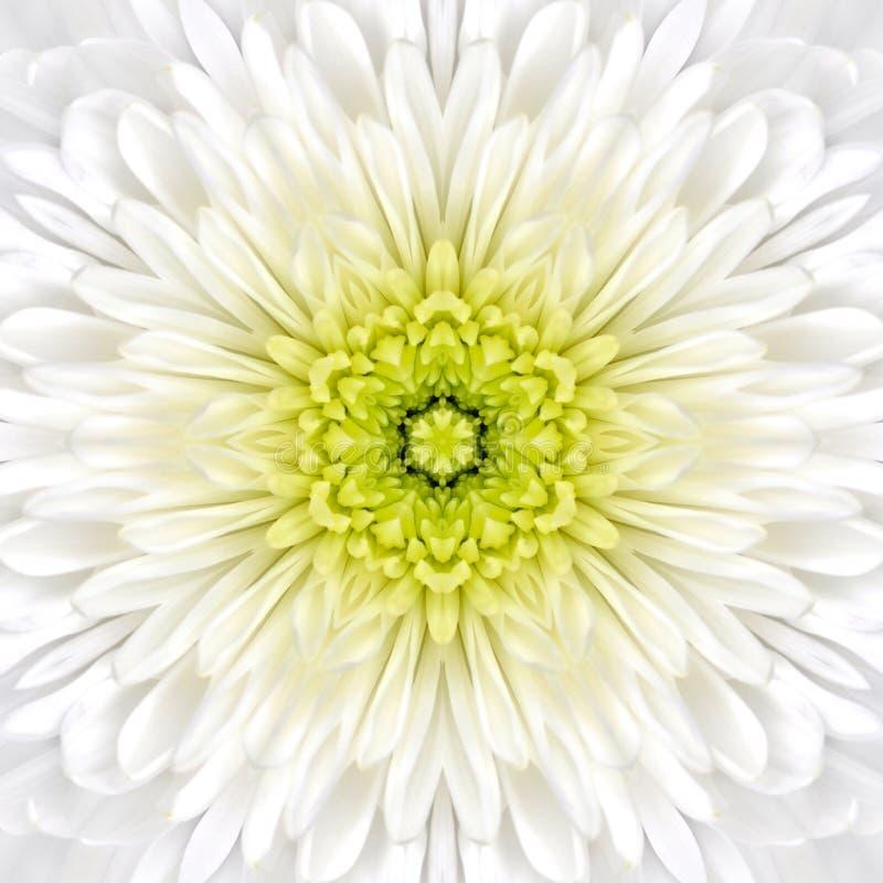 Mandala Concentric Flower Center Kaleidoscope blanca imagen de archivo