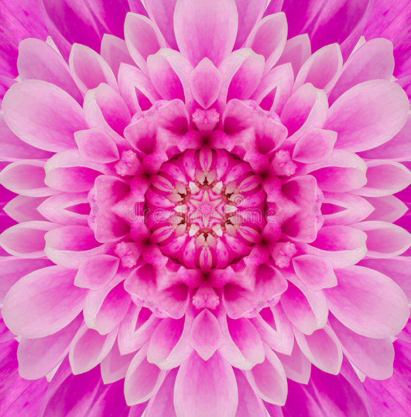 Mandala Concentric Flower Center Kaleidoscope rosada fotografía de archivo libre de regalías