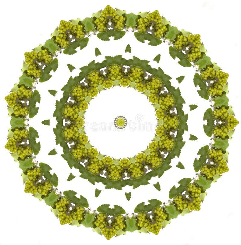 Mandala de las uvas ilustración del vector