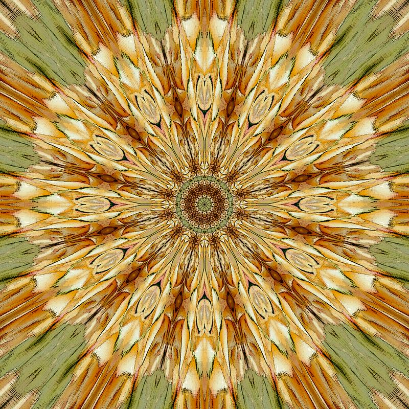 Mandala de oro del círculo con la flor del arabesque en el centro libre illustration