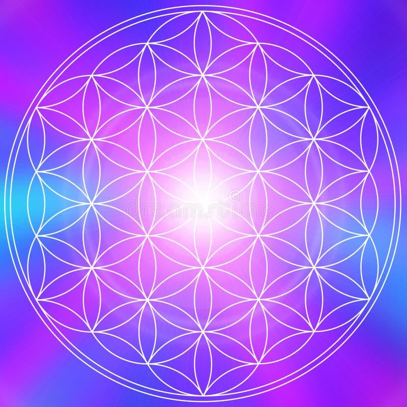 Mandala del fiore di vita immagine stock