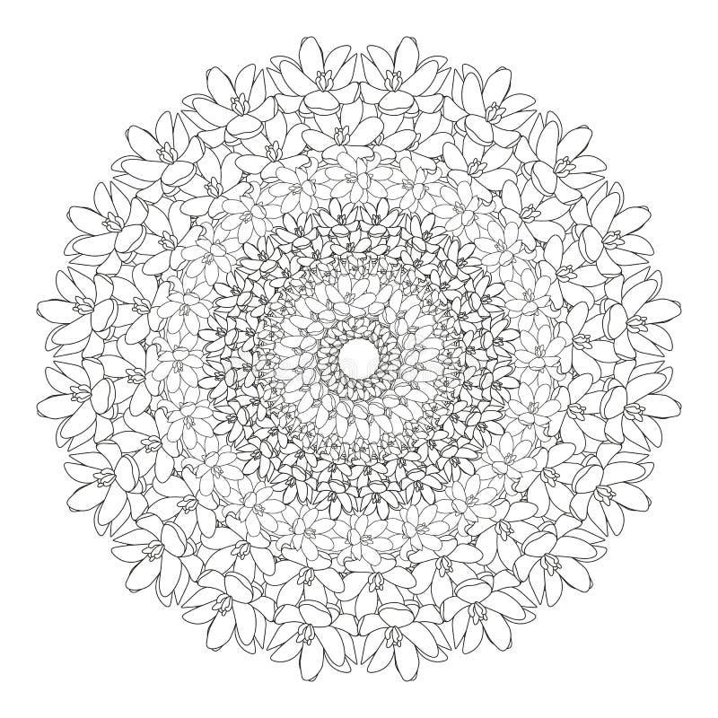 Mandala floral Zentangl d'illustration de vecteur Dessin de griffonnage Exercices m?ditatifs Anti effort de livre de coloriage illustration de vecteur