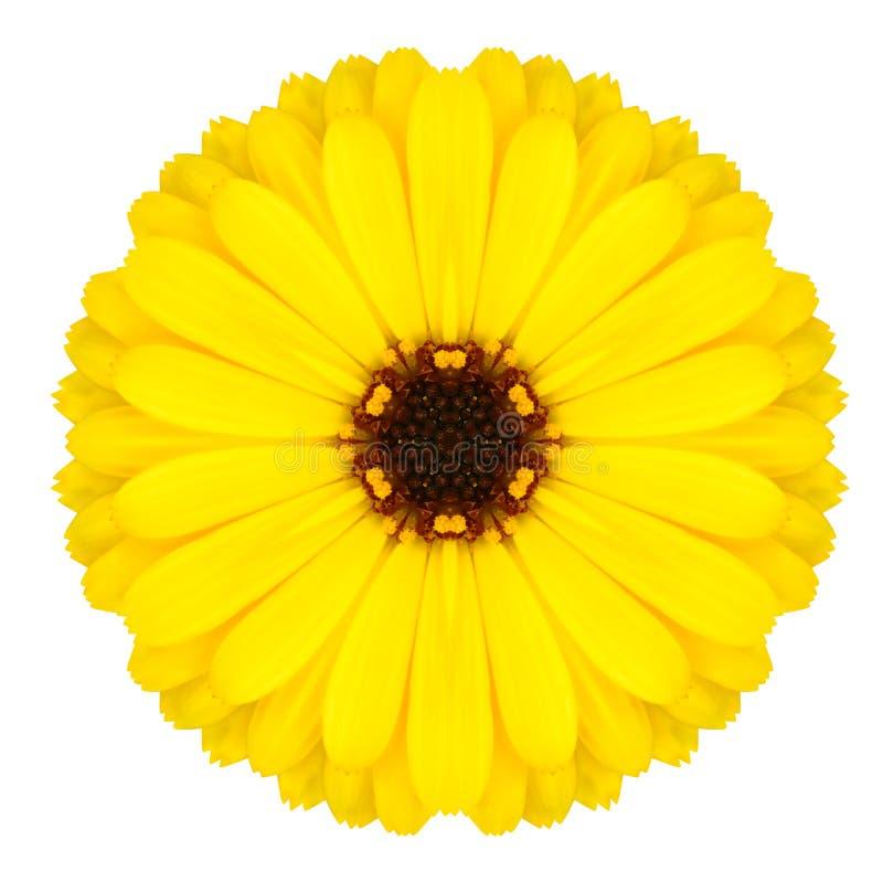 Mandala Flower Ornament amarela Teste padrão do caleidoscópio isolado foto de stock royalty free