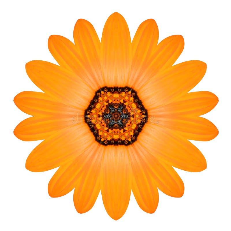 Mandala Flower Ornament arancio Modello del caleidoscopio isolato fotografia stock libera da diritti