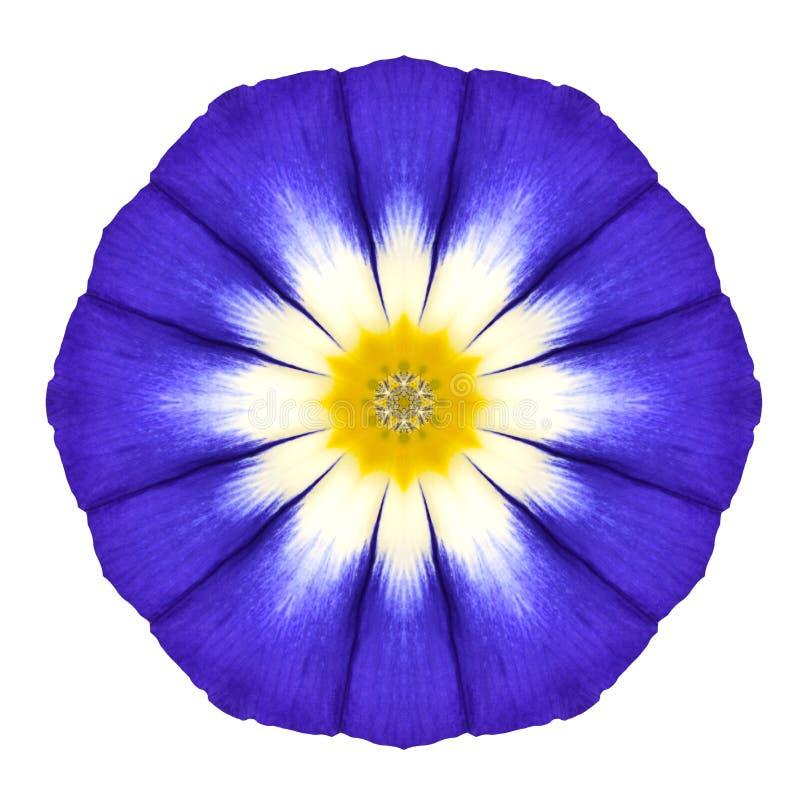 Mandala Flower Ornament azul Teste padrão do caleidoscópio isolado fotos de stock royalty free