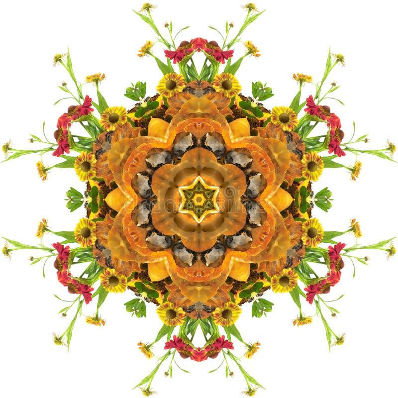 mandala jesienią royalty ilustracja