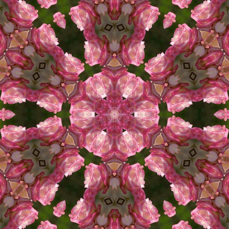Mandala rose de rose illustration libre de droits