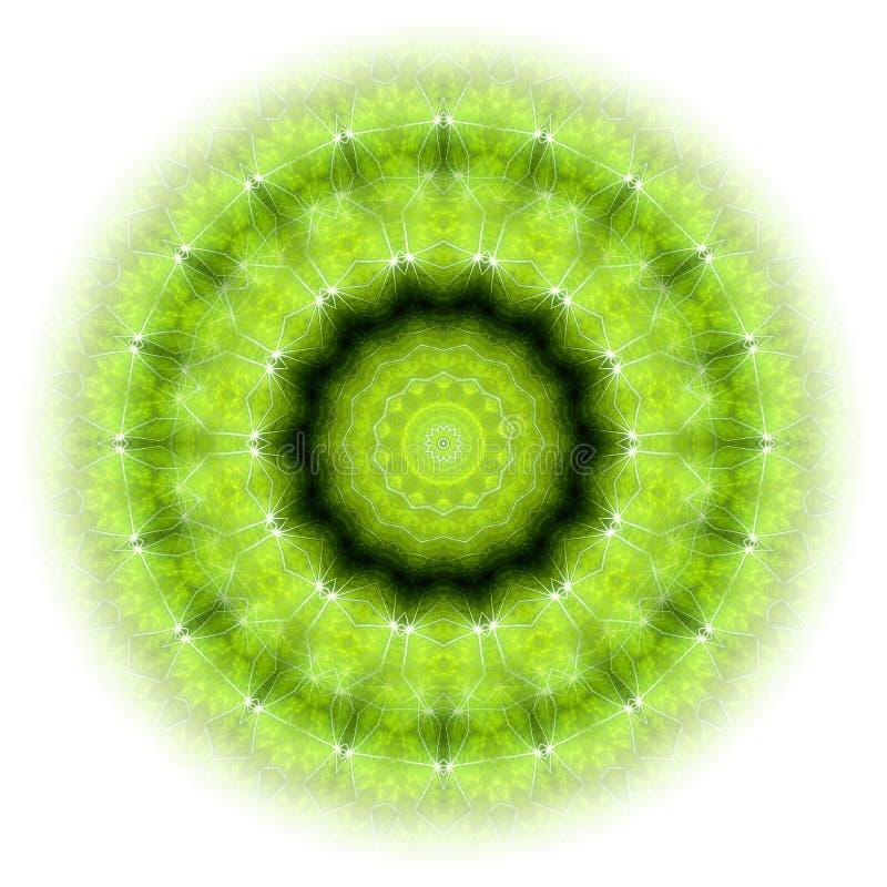 Mandala verde 01 della natura royalty illustrazione gratis