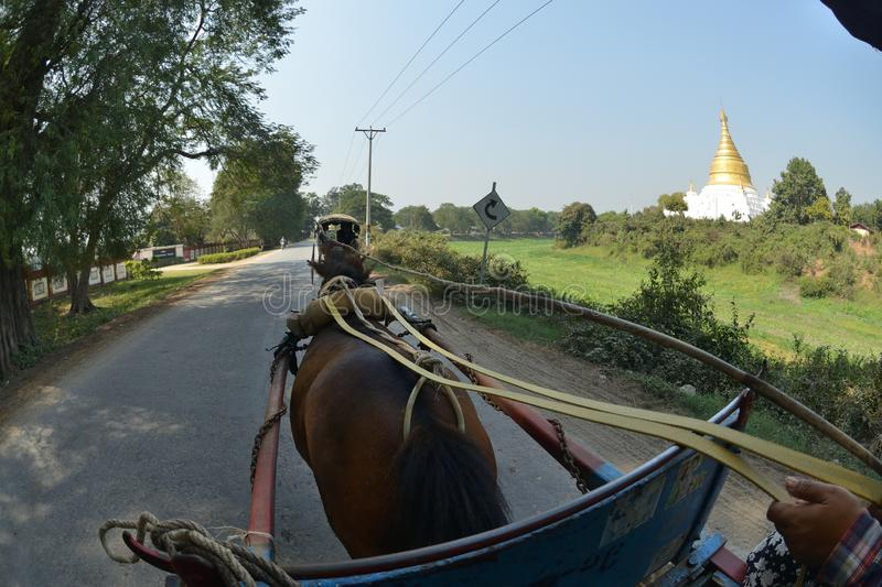 Mandalay Oe Toke Tan pony cart taxi. Myanmar Mandalay Oe Toke Tan pony cart taxi royalty free stock photo