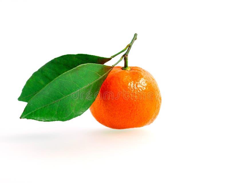 Mandarijn of clementine met groen die blad op witte achtergrond wordt geïsoleerd stock fotografie