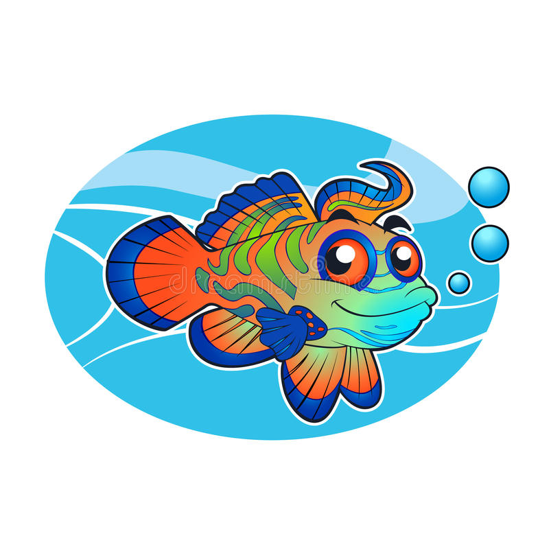 Mandarin fish cartoon. Vector illustration stock illustration