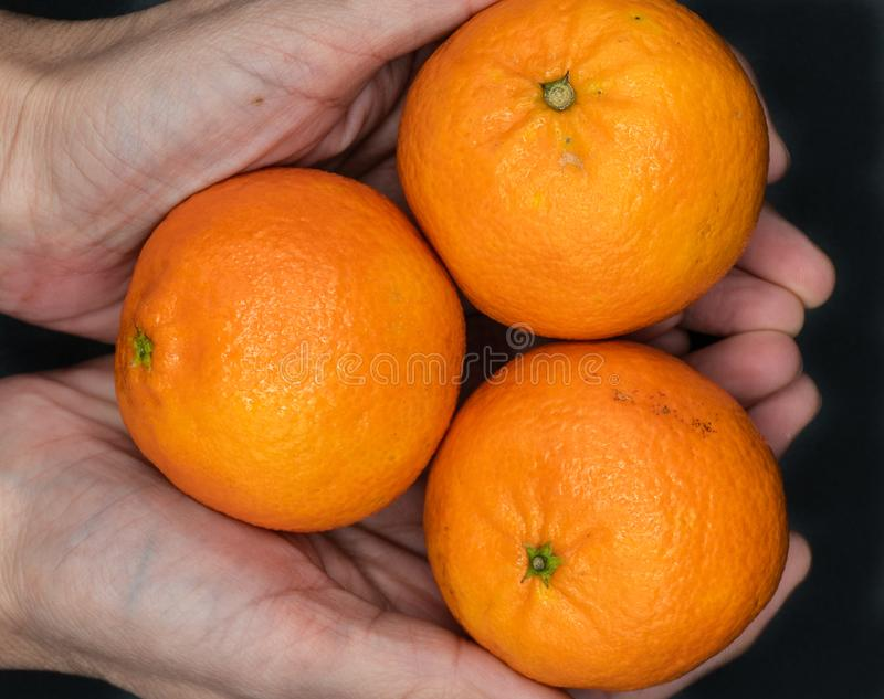 Tangerines from Spain stock images