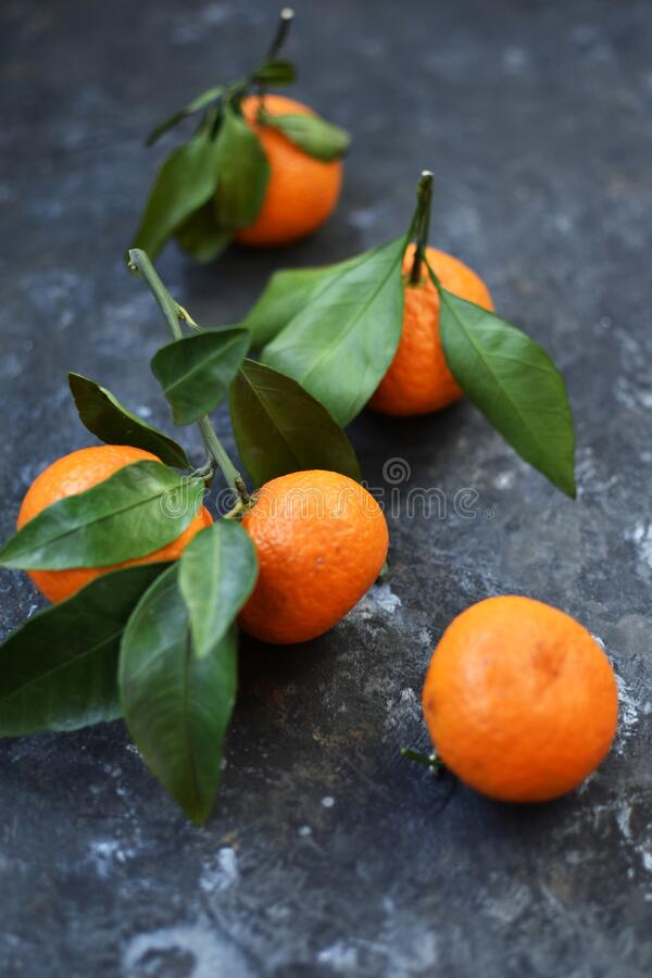 Mandarin is the fruit of an evergreen plant. Bright orange peel has... Mandarins are thought to have appeared in China, from where. They were brought to Europe stock photography