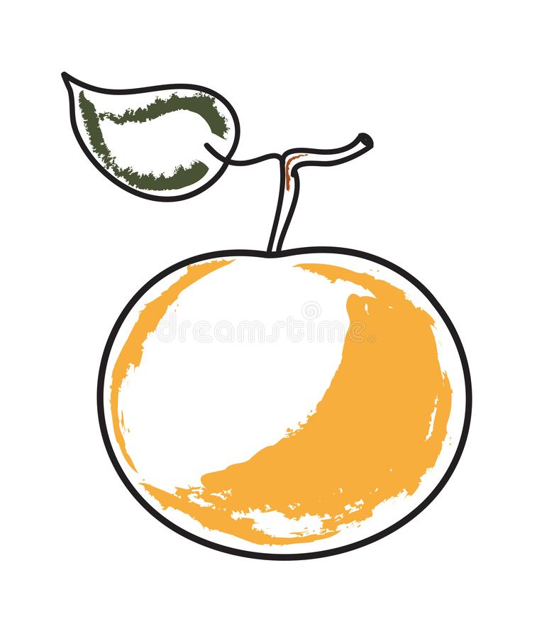 Mandarin with a leaf. Mandarin fruit with a sprig and leaf. Simple vector illustration vector illustration