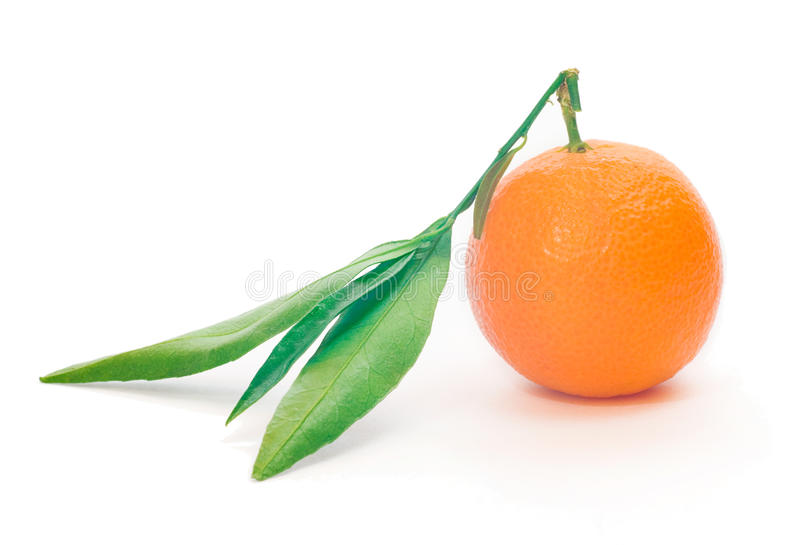 Download Mandarin with leaves stock image. Image of nutrient, freshness - 11870321