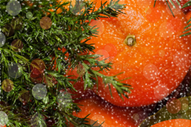 Mandarin with leaves, Christmas tree, bokeh. On dark background. Christmas and New year concept royalty free stock images