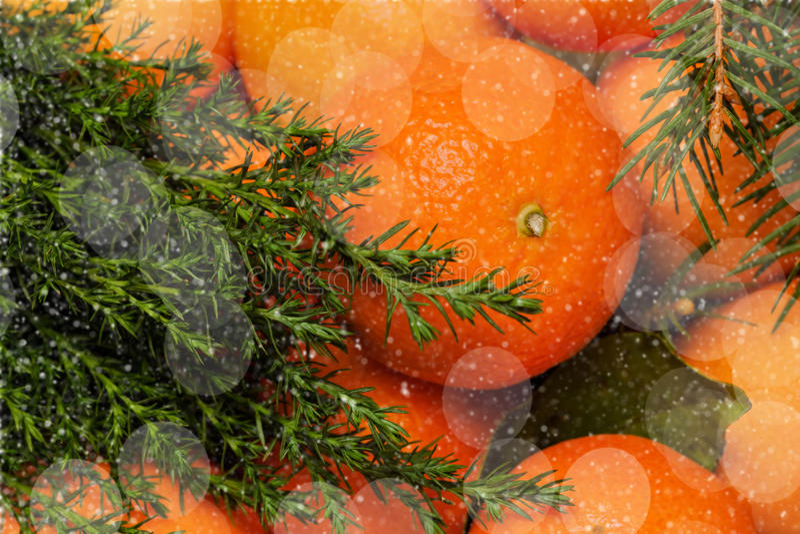 Mandarin met bladeren, Kerstboom, bokeh Traditioneel dessert, Nieuw jaar royalty-vrije stock fotografie