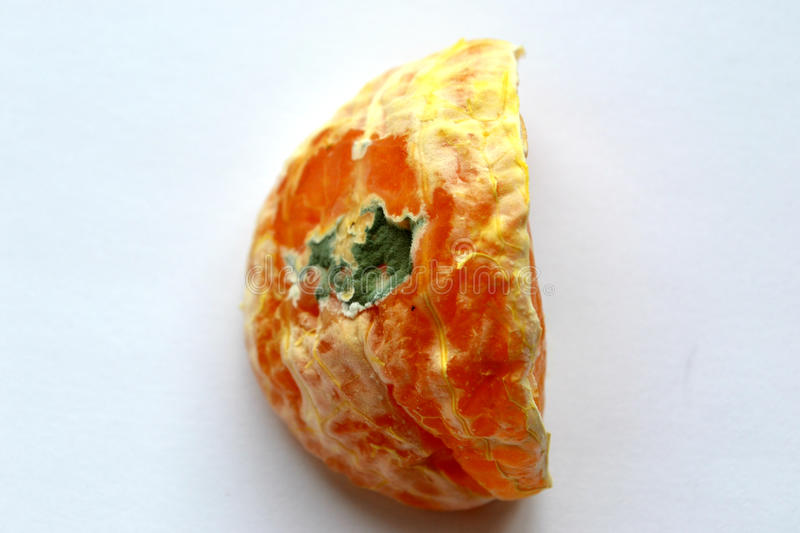 Mandarin with mold 2 stock photography