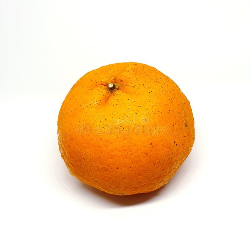 Mandarin Orange Fruit royalty free stock photos