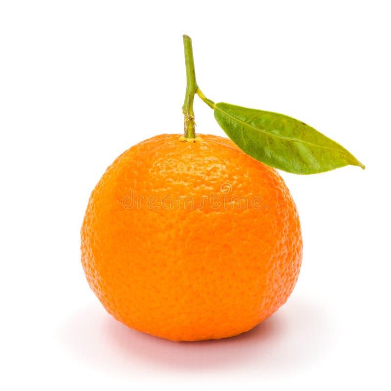 Mandarin (Satsuma-mandarijn of mandarijn) stock afbeelding