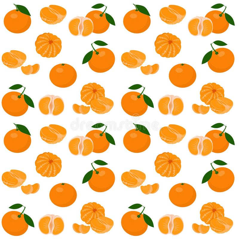 Mandarin, tangerine, clementine with leaves isolated on white background. Citrus fruit background. Seamless pattern. Vector stock illustration