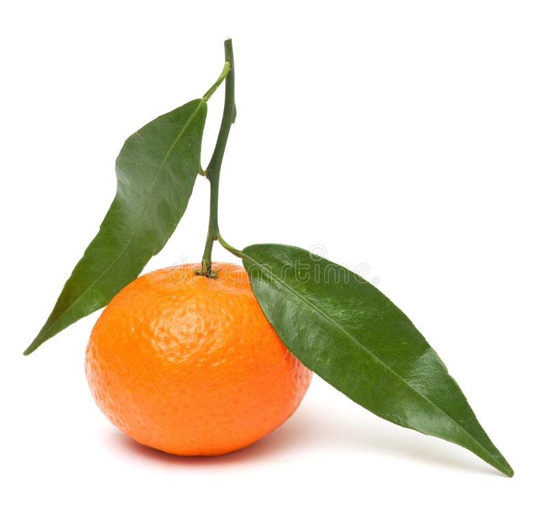 Free Mandarin With Leaves Stock Photography - 12459822