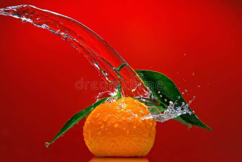 Mandarina con las hojas del verde y el chapoteo del agua fotos de archivo