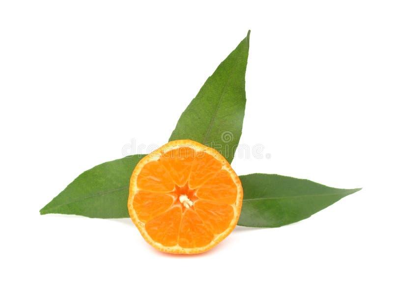 Mandarina de la clementina foto de archivo