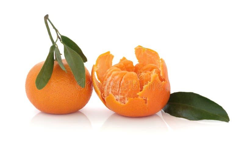 mandarinapelsiner arkivbilder