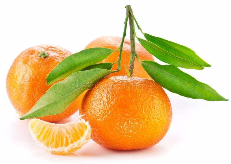 Mandarinas con las hojas. imagen de archivo
