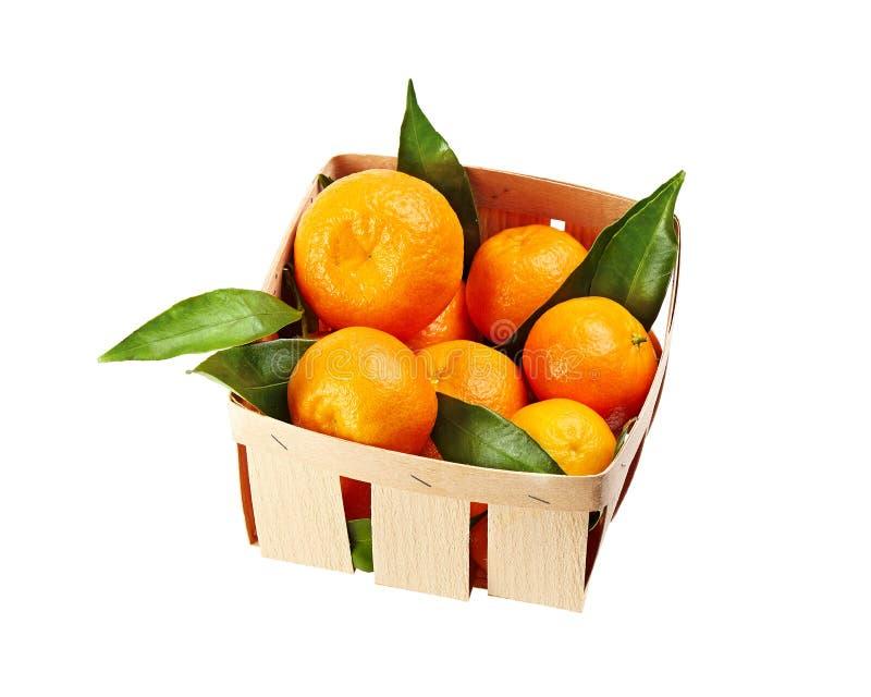 Mandarinas con las hojas en la cesta aislada en el fondo blanco fotos de archivo libres de regalías