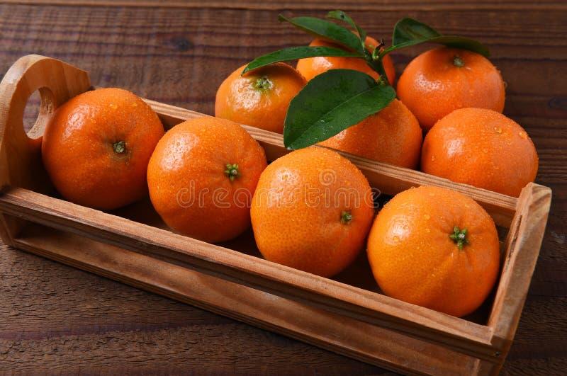 Mandarinas del cajón foto de archivo libre de regalías