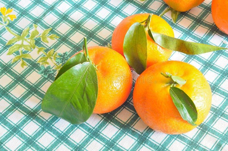 Mandarinas en mantel a cuadros, desde arriba fotografía de archivo