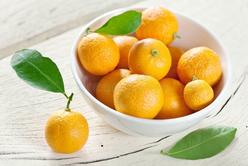 Mandarinas en un cuenco. fotografía de archivo libre de regalías
