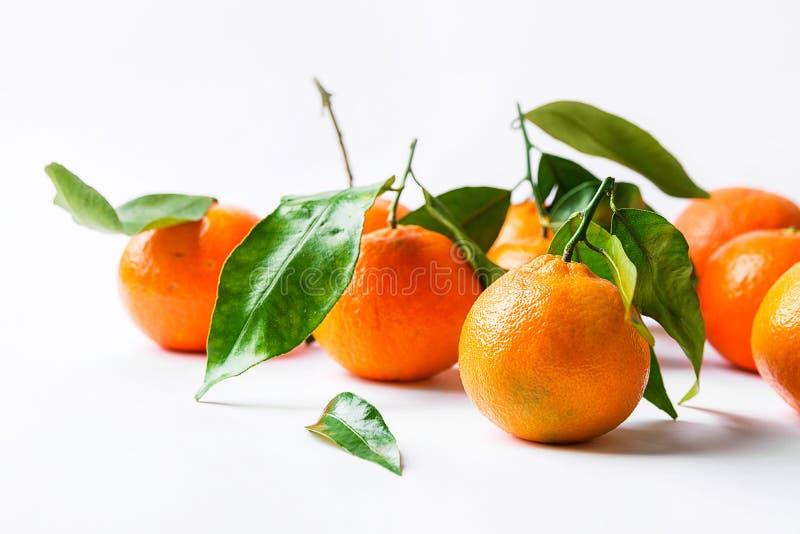 Mandarinas frescas en troncos con las hojas verdes en el fondo blanco de la pared de la tabla concepto del superfood de las vitam fotos de archivo