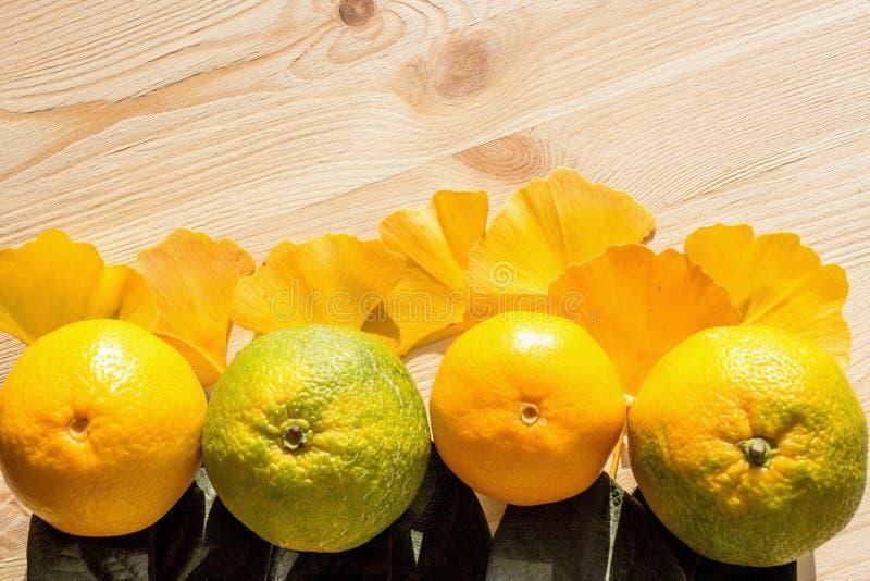 Mandarinas jugosas y hojas amarillas y verdes del árbol del ginkgo en una tabla de madera cruda fresca imagenes de archivo