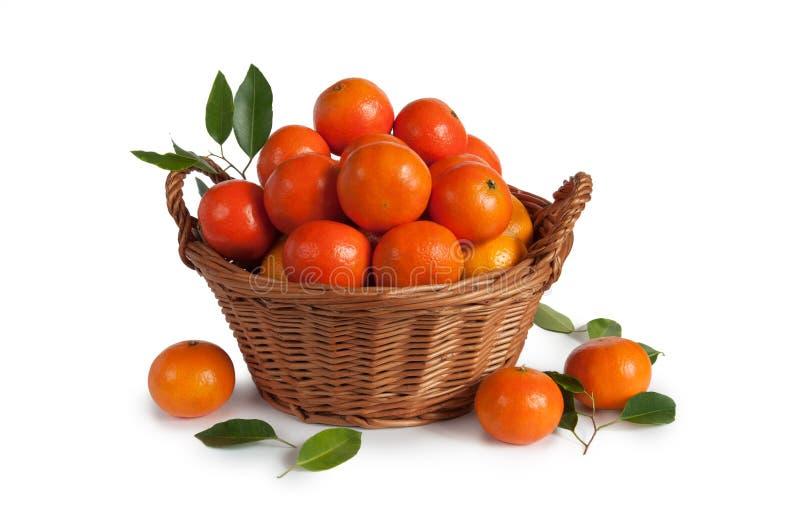 Mandarinas maduras con las hojas en cesta en el fondo blanco imagen de archivo