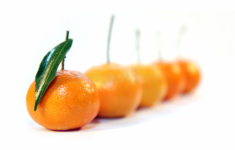 Mandarine photo stock