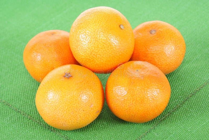 Mandarine royalty free stock images