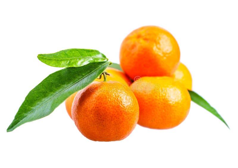 Mandarine d'isolement sur le blanc photo libre de droits