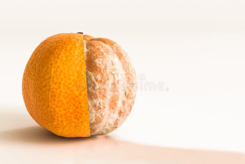 Mandarine d'isolement sur le fond blanc illustration de vecteur