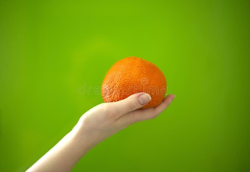 Mandarine in der Hand auf einem grünen Hintergrund stockbilder