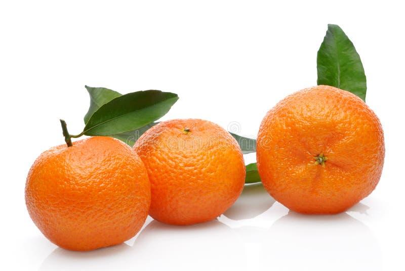 Mandarine drei lizenzfreies stockbild