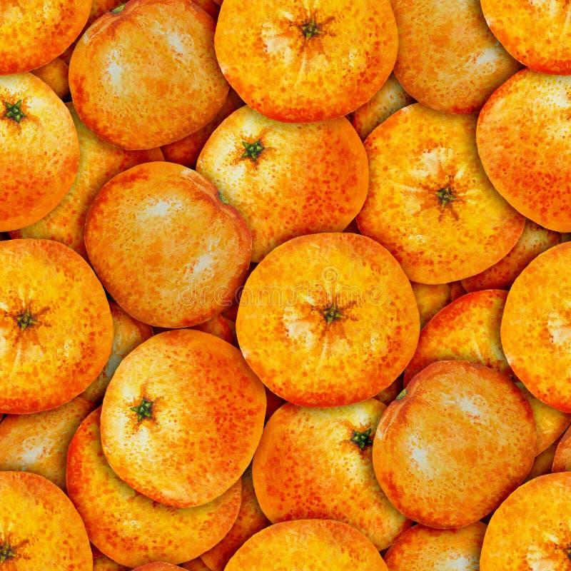 Mandarine sans couture d'aquarelle de modèle photographie stock